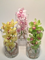 Flowers Etc Medium Cymbidium Orchid Cylinder Vase