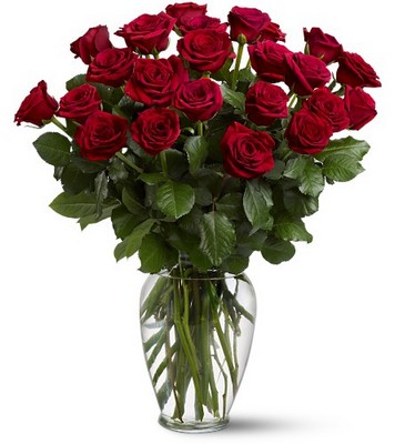 Two Dozen Red Roses from Flowers, Etc. in Newington, CT