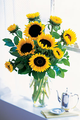 Shining Sunflowers from Flowers, Etc. in Newington, CT