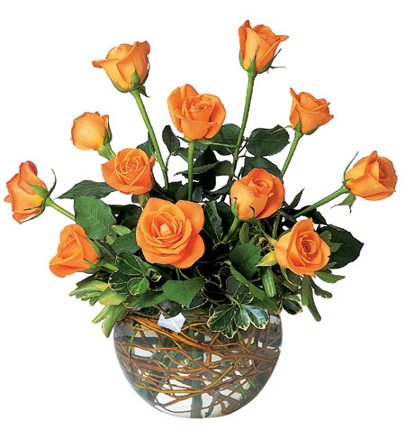 A Dozen Orange Roses from Flowers, Etc. in Newington, CT
